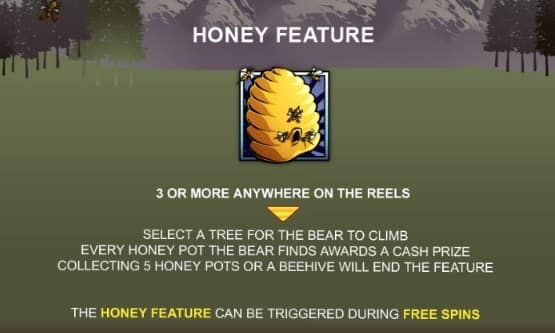 Slot Bonus Bear dari Playtech
